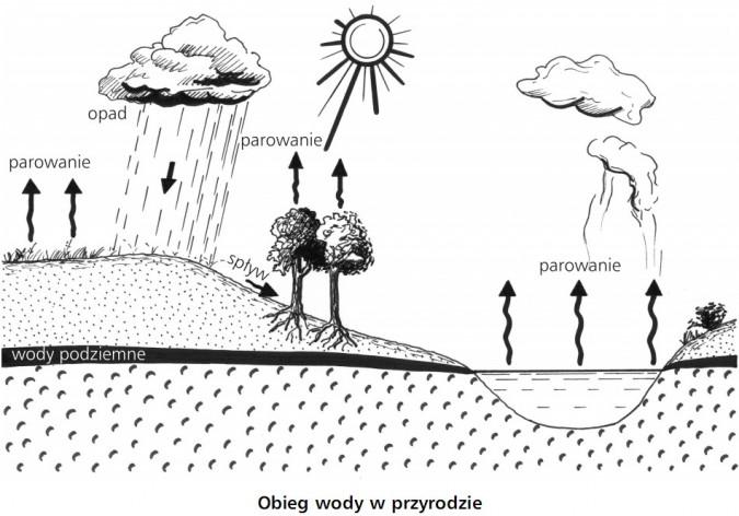 Obieg wody w przyrodzie