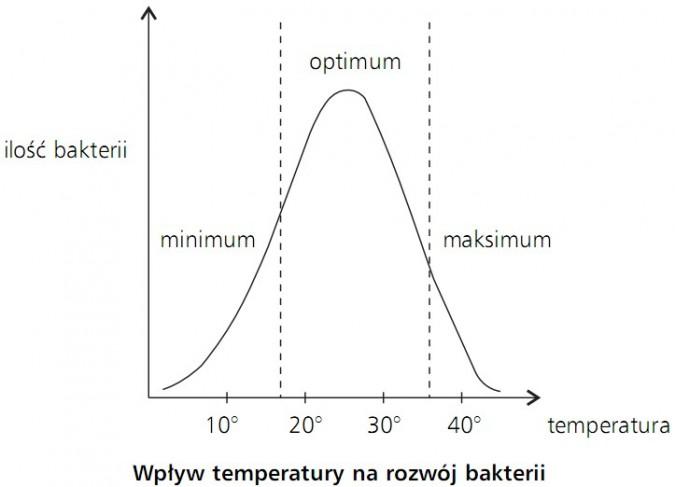 Wpływ temperatury na rozwój bakterii. Ilość bakterii, temperatura. Minimum, optimum, maksimum.