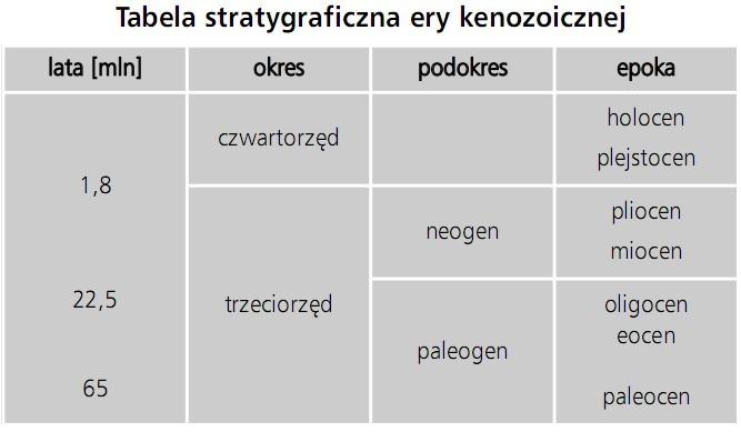 Tabela stratygraficzna ery kenozoicznej. Lata [mln], okres, podokres, epoka. Czwartorzęd, trzeciorzęd. Neogen, paleogen. Holocen, plejstocen, pliocen, miocen, oligocen, eocen, paleocen.