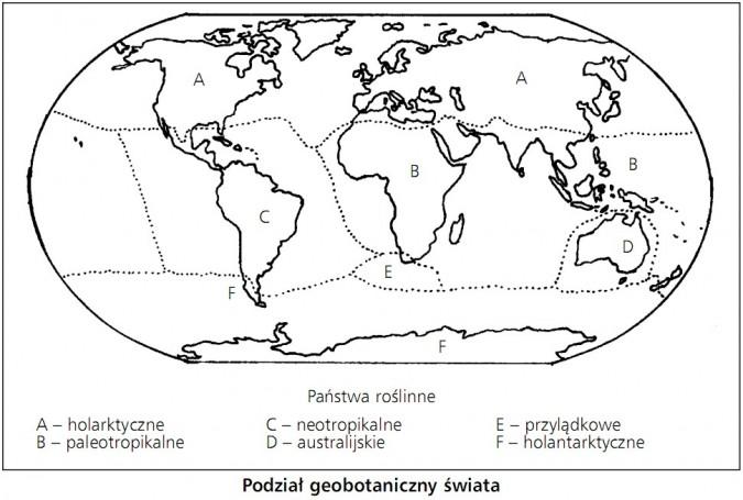 Podział geobotaniczny świata. Państwa roślinne: holarktyczne, paleotropikalne, neoptropikalne, australijskie, przylądkowe, holantarktyczne.