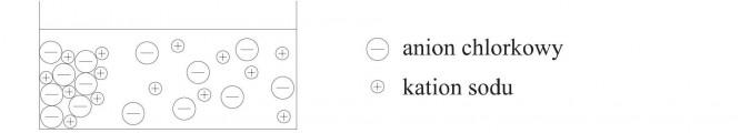 Anion chlorkowy, kation sodu.