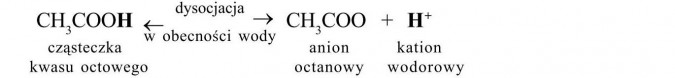Charakterystyka kwasów karboksylowych. Kwas octowy - dysocjacja. Cząsteczka kwasu octowego, anion octanowy, kation wodorowy. Dysocjacja w obecności wody.