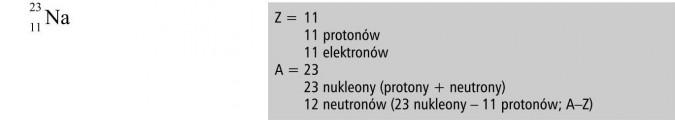 Budowa atomu a położenie pierwiastka w układzie okresowym. 11 protonów, 11 elektronów, 23 nukleony, 12 neutronów.