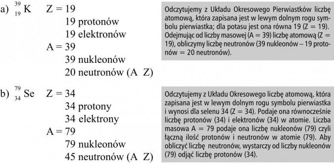 Odczytujemy z Układu Okresowego Pierwiastków liczbę atomową, która zapisana jest w lewym dolnym rogu symbolu pierwiastka; dla potasu jest ona równa 19 (Z = 19). Odejmując od liczby masowej (A = 39) liczbę atomową (Z = 19), obliczymy liczbę neutronów (39 nukleonów - 19 protonów = 20 neutronów). Odczytujemy z Układu Okresowego liczbę atomową, która zapisana jest w lewym dolnym rogu symbolu pierwiastka i wynosi dla selenu 34 (Z = 34). Podaje ona równocześnie liczbę protonów (34) i elektronów (34) w atomie. Liczba masowa A = 79 podaje ona liczbę nukleonów (79) czyli łączną ilość protonów i neutronów w atomie (79). Aby obliczyć liczbę neutronów, wystarczy od liczby nukleonów (79) odjąć liczbę protonów (34).